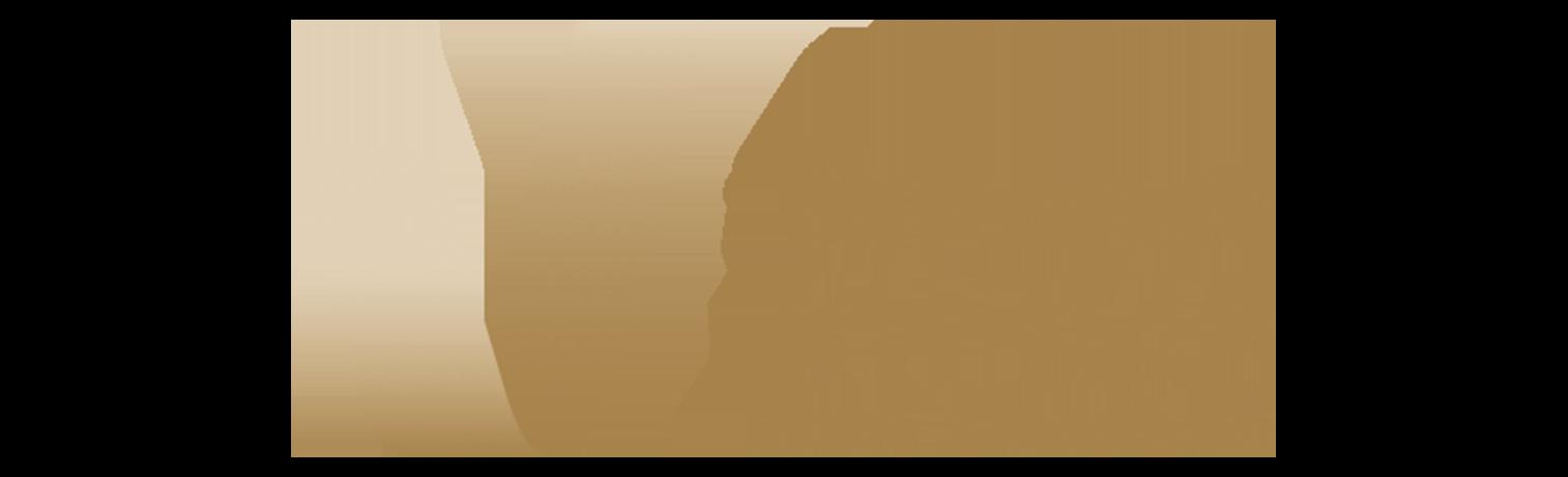 Sakuragicho Hospitality KK.[Finance Assistant - Accounts Payable & Financial Reporting ] New Opening Hotel in Yokohama